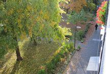 Veszprém(Magyarország) ősz,2013