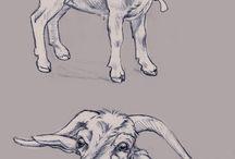 Farm Drawings Sketches