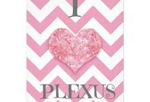 My Journey through Weight Loss and Improved Health / In September of 2013, I heard about Plexus from an old friend. I had never even tried to lose the 65 pounds I had been carrying around for the past 10 years, but I trusted my friend and I am forever grateful that I did. I have lost 40 pounds in 6 months and I have gone from a size 16 to a size 8. I have energy (which is hard to come by when you are a homeschool mom of 4.)