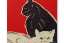 divine felines