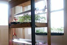 Prepper Vegetable Gardening
