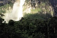Parques Nacionales / Haz un recorrido fotográfico por los parques nacionales de Venezuela. Para solicitar imágenes contáctanos a archivo@el-nacional.com / by Archivo El Nacional