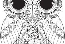 Aww Owls <3