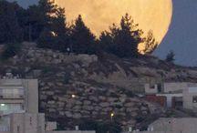 Księżyc nad Jerozolimą - 2013
