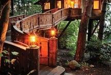 Tree House's! / by Treena Smith