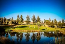 Golf Courses / Tree architecture in golf courses of the world