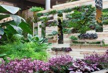 DECORACIÓN EXTERIOR / Decoración exterior con plantas y #pallets