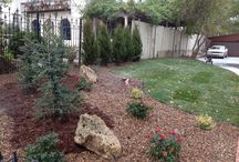 Landscape Design   Wichita, Kansas / Our Landscaping ideas give homeowners a beautiful landscape.  We can give you landscaping ideas for your front or back yard.  Daniels Lawn and Landscaping Services ensure your landscape project starts with a good design. A good landscape design is the foundation of your entire landscape project.