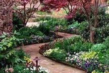 garden and balkon..ΚΗΠΟΣ ○°