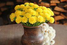 Реалистичная флористика из холодного фарфора / Цветы и украшения слеплены полностью вручную из холодного фарфора.