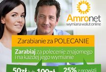 Amronet.pl Waluty