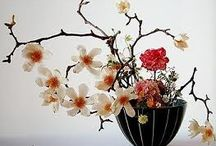 """The Arrangement of Flowers / One of the joys of my creative life, besides writing, is flower arranging. An endless learning curve of pleasure for me. """"In any floral arrangement, if we study it carefully, we can read some of the secrets of the arranger's heart."""" ....Beverley Nichols"""