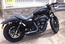 H-D Iron 883 / Harley-Davidson Sportster 883 Iron.  eBay edition. Lol.