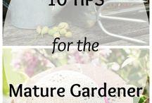 Gardening & Cooking / by Eden Condensed