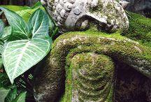 Buddha's ❤️