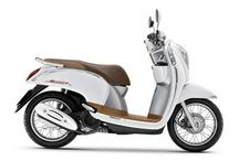 scoopy modif