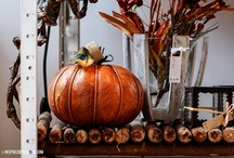 Fall holiday / by Melissa Davis