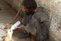 Amazing Compassion