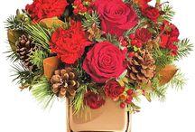 Roflora Winter Collection