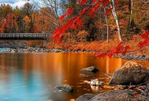 Love autumn! / like a leaf peeper :)...but it's perfect, isn't it?