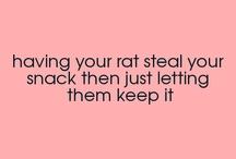 Rat thigs