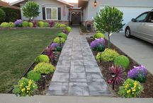 Home front yard revamp