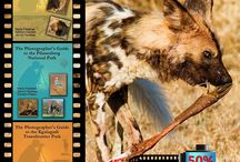Instructional wildlife photography eBooks