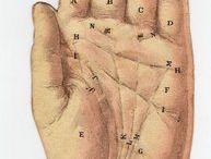 Diagram - Hand