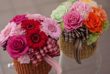 My Flower for Gift  / Make & Photo by myself ... Tsutomu Akabane / by Tsutomu Akabane