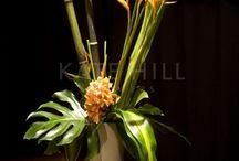 plant | 绿植 花艺