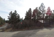 406 Monument, Pagosa Springs, CO 81147 / Listing Broker - Shelley Low Wonderful lot with Peek-a-boo views of the lake. level lot with lots of tress and an ieal location for a building site. Tap fees are paid and this is a nice location for your getaway or full time home. You'll love this corner lot location