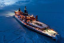 Arctic / / Antarctic