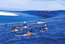 bodyboarding - waves