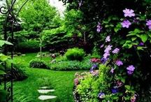 Hage / Ideer til hage og  terrasser