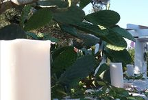 Wedding in Puglia Italy #TrulliRoccia #homeaway.co.uk/p1406277 #Ostuni #trulli to rent / Beautiful Countryside Setting Wedding in Puglia Italy at TrulliRoccia #TrulliRoccia #homeaway.co.uk/p1406277 #Ostuni #Cisternino #MartinaFranca #trullitorent #beautifultrulliwithpool #ItalianWeddings #Puglianweddings #weareinpuglia