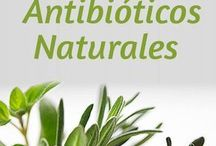 antibiótico natural