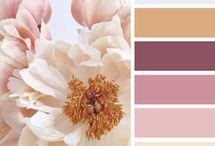 Lovely colors / Colores que me gustan