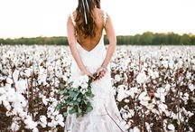Wilmington Wedding Dress Stores / Beautiful Wedding Dress Stores in Wilmington NC