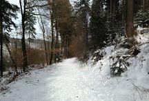 wandelen Hermannsweg