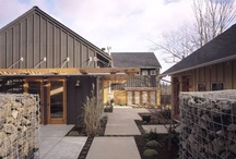 Maples / by Tim Derrington, AIA