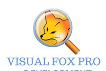 Visual Foxpro / Visual FoxPro is a programming language and environment for database application development