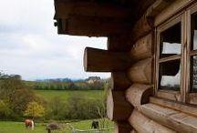 Lumen Conservation Rooflights