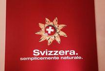 Gottardo 2016. Italia - Svizzera