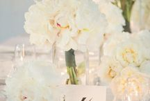 Wedding flower & color ideas / by Holly Anne