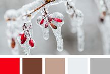 Winter Colour Palettes
