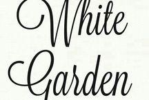 •●• White Garden •●•