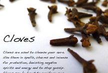 Herbal Grimoire / by Rhoawan Moonstone