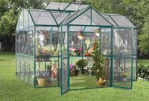 Greenhouse Ideas / by Bernadette Fox