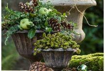 florystka owoce