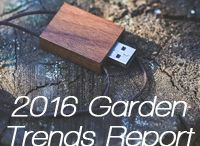 2016 Garden Trends / Use these garden trends to turn your garden, yard, balcony or indoors into a year round garden.  / by Suzi McCoy